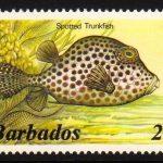Barbados SG764A