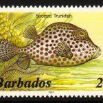 Barbados SG764B