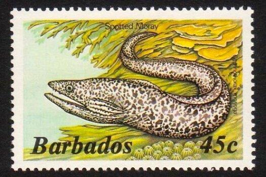Barbados SG771A
