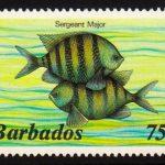 Barbados SG774A