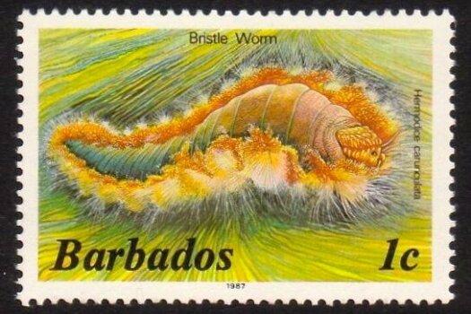 Barbados SG794B