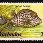 Barbados SG795B