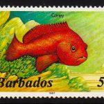 Barbados SG796B