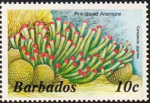 Barbados SG797A