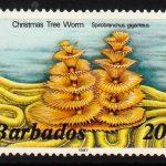 Barbados SG798B