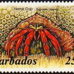 Barbados SG799A