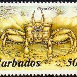 Barbados SG801A