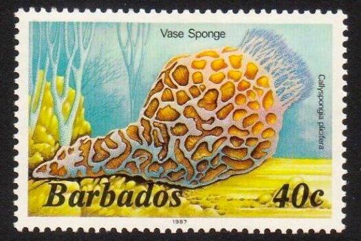 Barbados SG801B