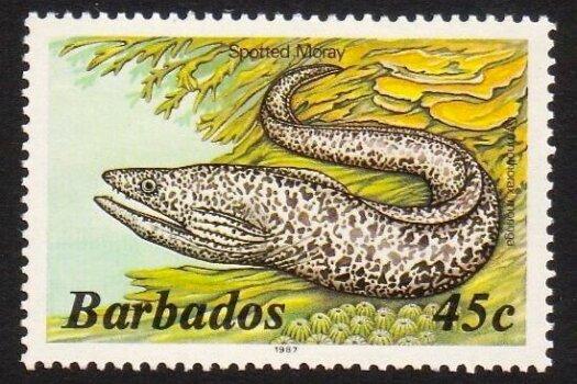 Barbados SG802B