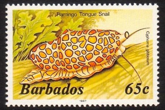 Barbados SG804B