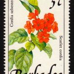 Barbados SG891