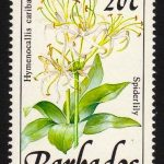 Barbados SG893