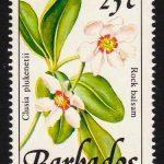 Barbados SG894