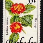 Barbados SG895A