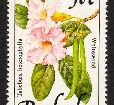 Barbados SG897