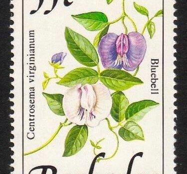 Barbados SG898