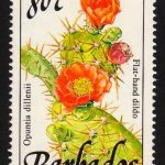 Barbados SG901