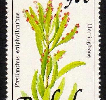 Barbados SG901A