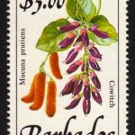 Barbados SG904