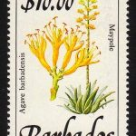 Barbados SG905