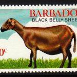 Barbados SG694