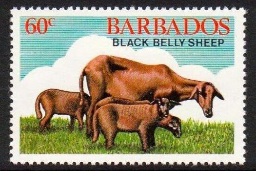 Barbados SG695