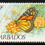 Barbados SG719