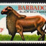 Barbados SG693
