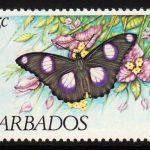 Barbados SG720