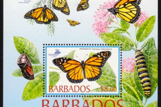 Barbados SGMS1265 | Butterflies, Pacific Explorer 2005 World Stamp Expo, Sydney, Australia